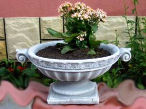 venetia jardiniera